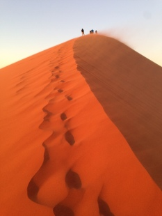 "Looking back at hikers near top of ""Dune 45"" at sunrise"