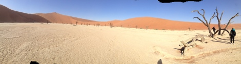 Look across Deadvlei