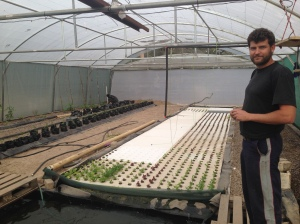 Our friend Kristophe (who attended our wedding) and his hydroponic farm startup in Katima Mulilo