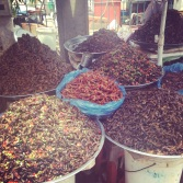 Crickets and other critters at a roadside stand - a common delicacy found all over Cambodia - we couldn't build up the courage to try one :)