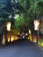 Driveway to hotel (not ours :)) in Chiang Mai