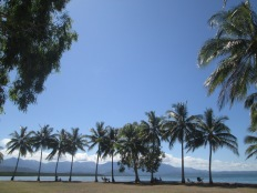 Port Douglas, an hour north of Cairns - the drive is gorgeous along the coast.