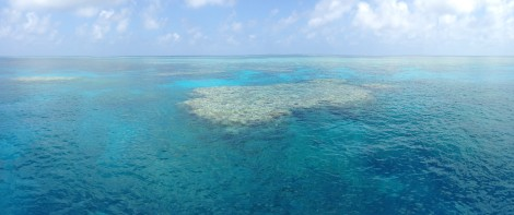 The outer Great Barrier Reef from the top deck of our boat.
