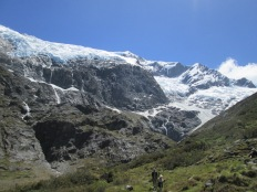 Rob Roy Glacier, Mt Aspiring National Park