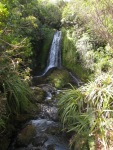 One of many little waterfalls along a walk in Taranaki/Egmont National Park