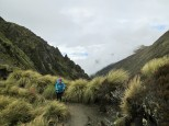Along the Kepler Track