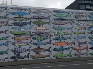 Shark mural in Wellington