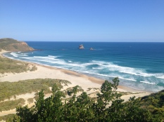 Lookout over Sandfly beach on the Otago Peninsula