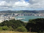 View of downtown from Mt Victoria, great park in downtown Wellington
