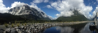 From the dock of Milford Sound