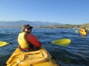 Sea kayaking in Kaikoura
