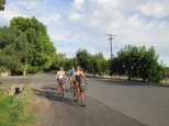 Mendoza bike wine/vineyard tour